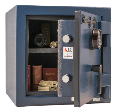 AMSEC safe containing money and other valuables