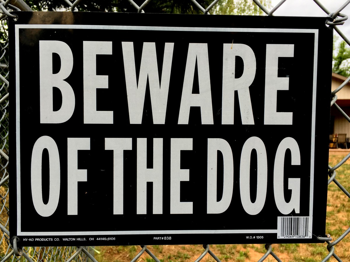"A ""Beware of Dog"" sign on a fence"