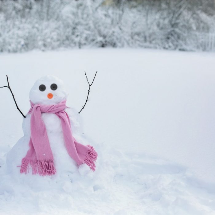 snow_woman_snowman_snow_winter_cold_fun_woman_outdoors-648821