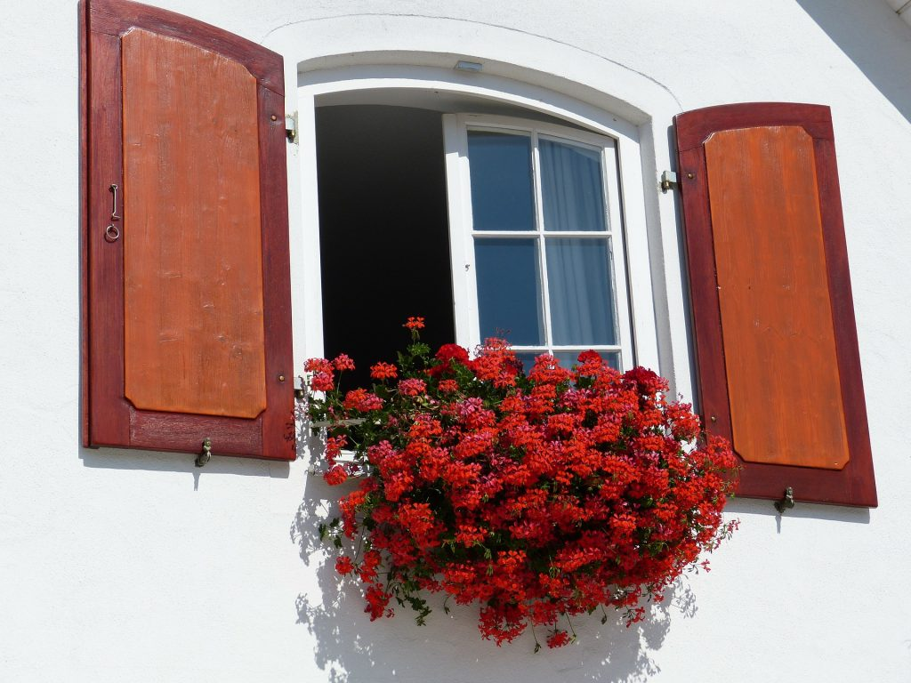 An open window with decorative flowers.