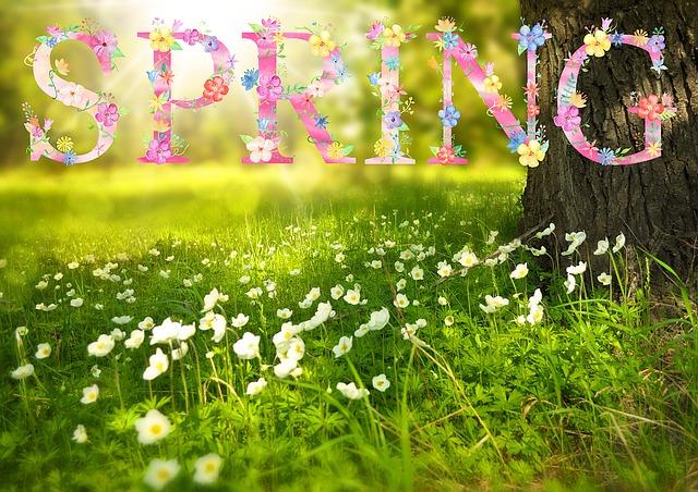 spring-1210194_640